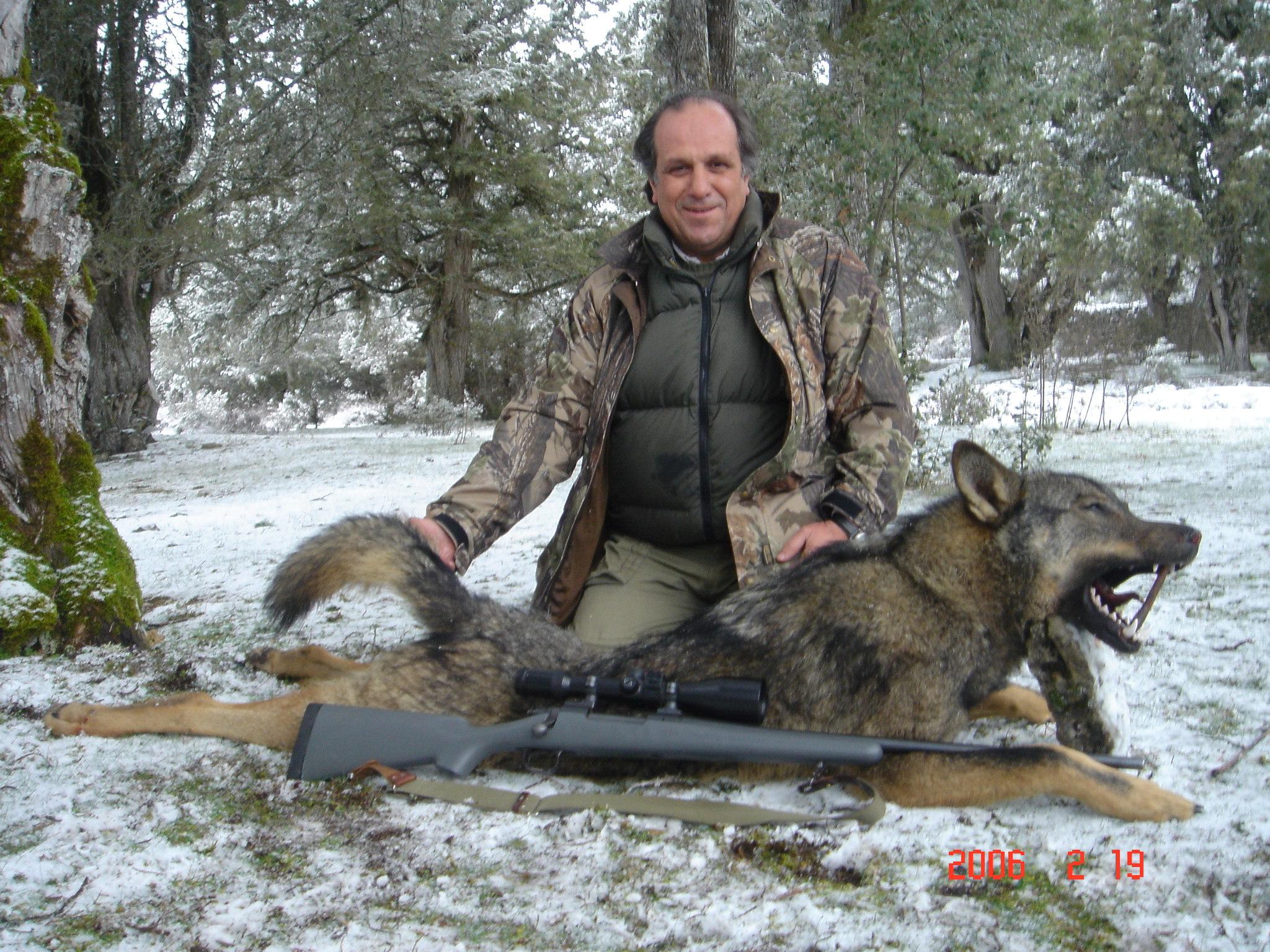 Macedonia lobo y jabali en Batida y espera