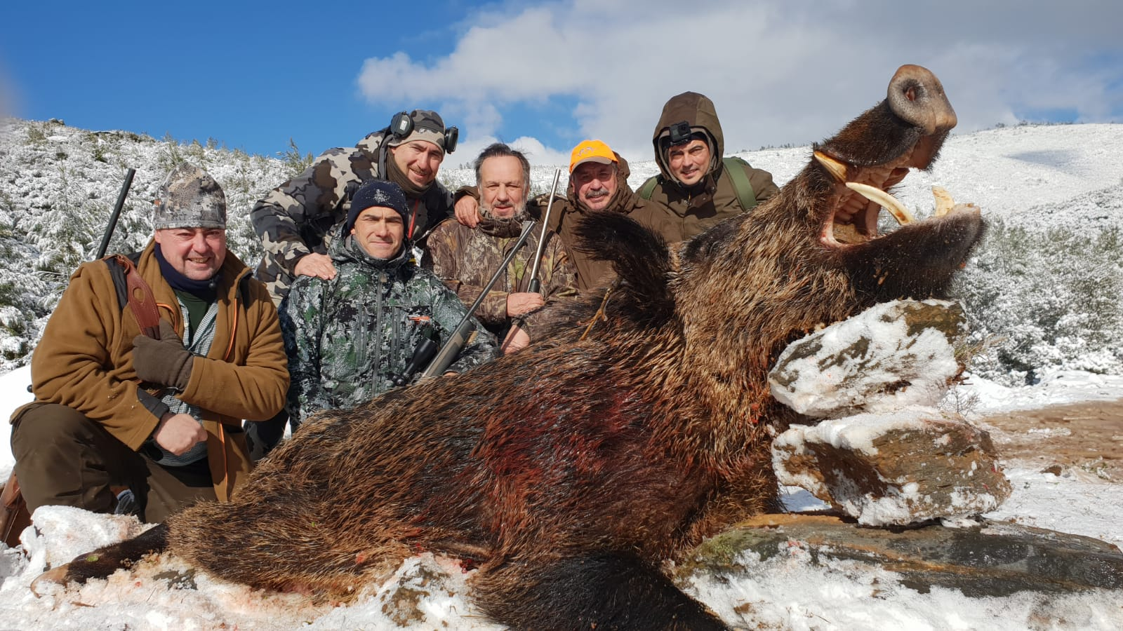 Turquia  batidas jabali caza en Reservas.
