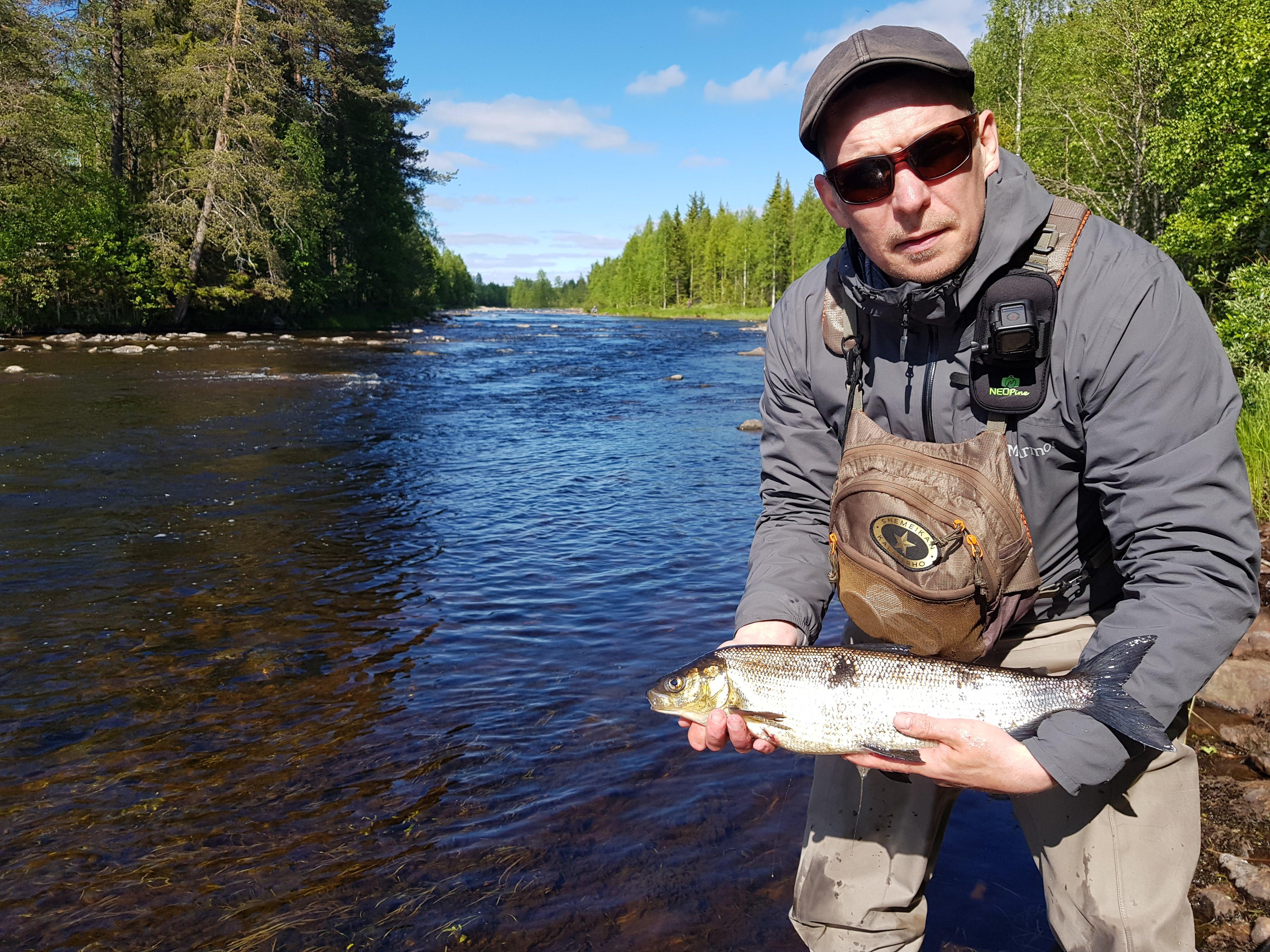 Pesca en Finlandia grandes truchas